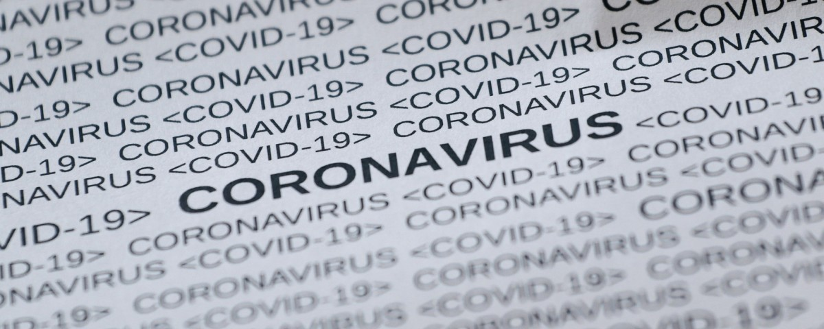 feline-corona-virus-5033326_1920